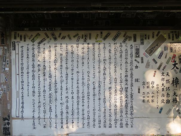 來宮神社3.jpg