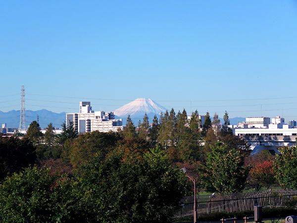 富士山1*.jpg