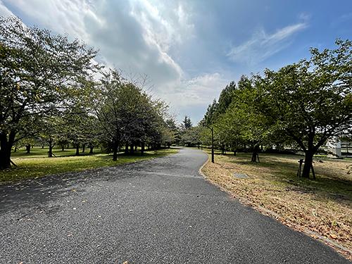 舎人公園4.jpg